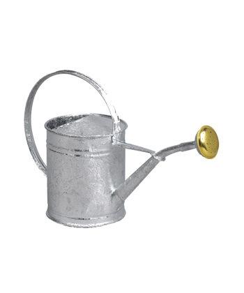 Arrosoirs en acier galvanisé d'une contenance de 1L - Guillouard