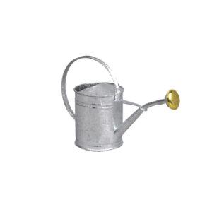 Petit arrosoir en acier galvanisé d'une contenance de 1L - Guillouard