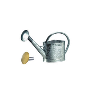 ARROSOIR galvanisé de contenance 6L (avec 2 pommes)