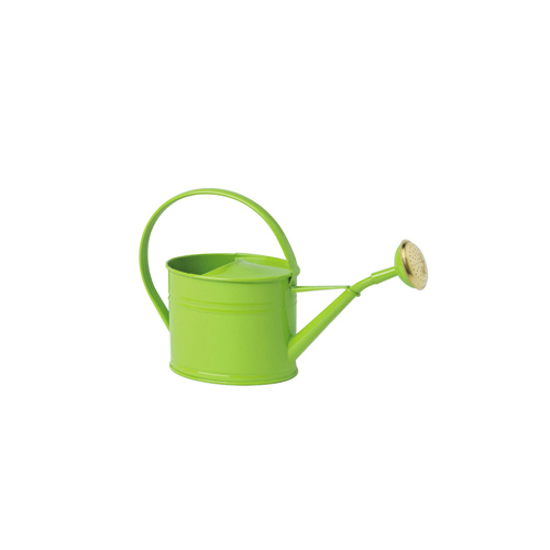 Arrosoir-vert en acier galvanisé d'une contenance de 1.75L Vert