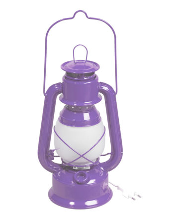 La magnifique lampe lilas Guillouard !